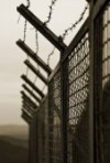 686363-the-security-fence-topped-with-barbed-wire